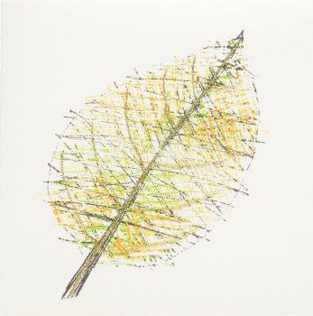 Gold Leaf - 153G