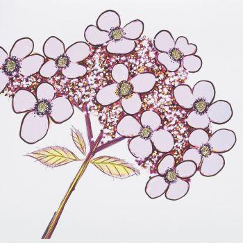 Hydrangea Purple - 420PW