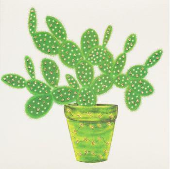 Cactus - 10G