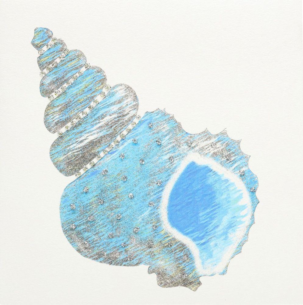 Seashell ( Blue )