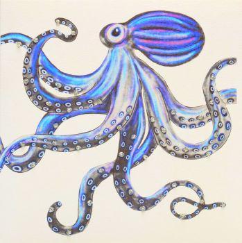 Octopus ( Blue ) - 398G