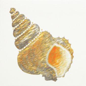 Seashell ( Gold ) - 03GG