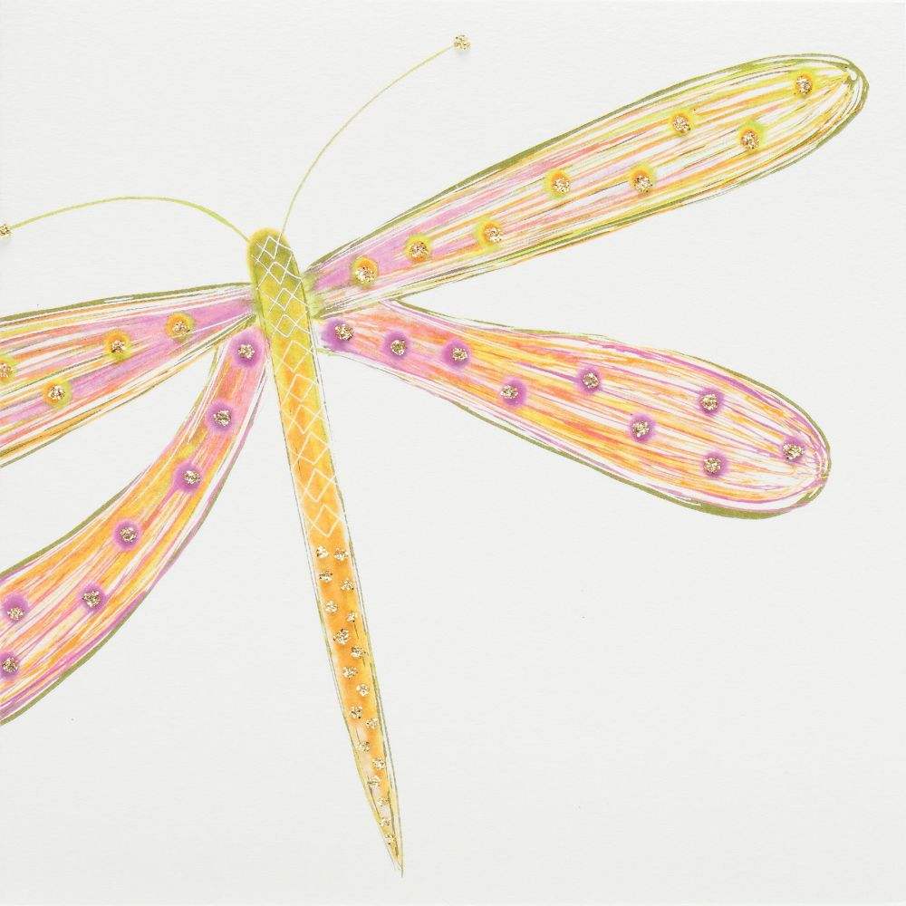 Pink-Orange Dragonfly