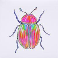 Bug Tropical - 387TW