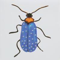 Bug Sapphire - 387SW