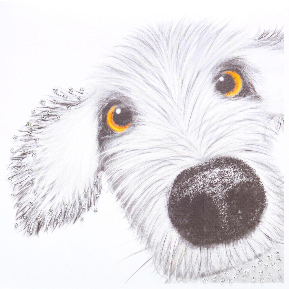 Spike dog