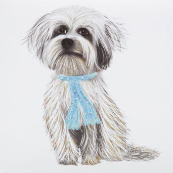 Tibetan Terrier ( Oscar ) - 355W