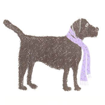 Black Labrador - 319W