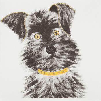 Schnauzer Puppy - 337AG