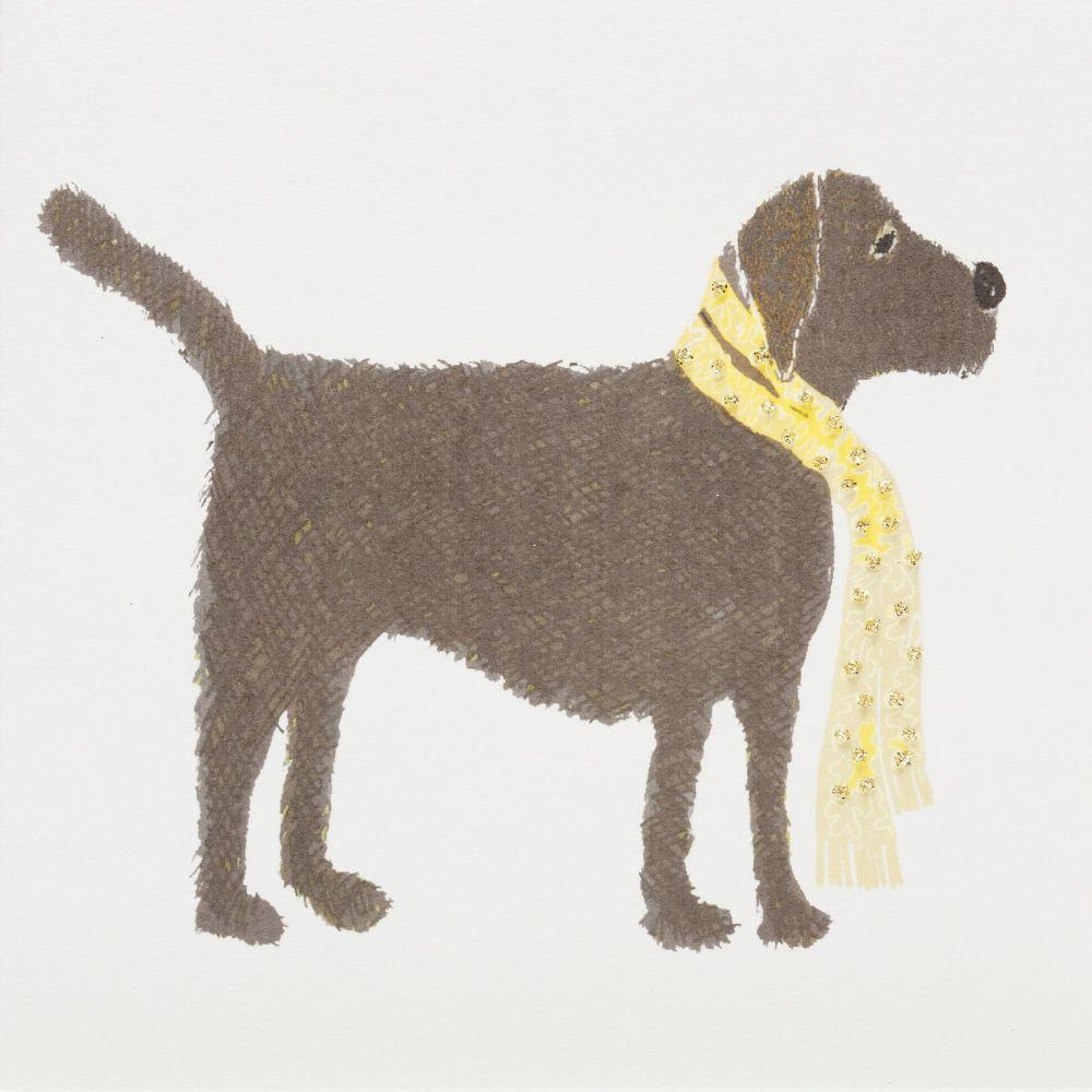 Labrador Brown
