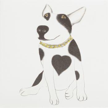 English Bull Terrier - 383G