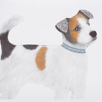 Jack Russell - 336AW