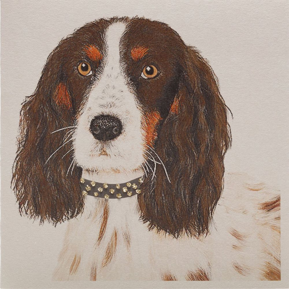 Spaniel Willow Clay