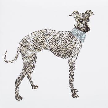 Greyhound - 322W