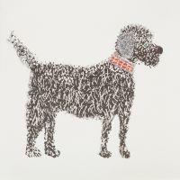 Doodle Poodle - 346W