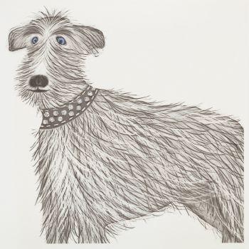 Woolfie dog