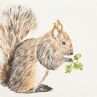 Squirrel - 432G