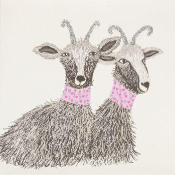 Goats - 24G