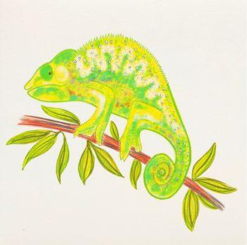 Chameleon - 393G