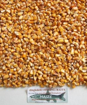 5kg SEALED PACK MAIZE SEED,CARP FISHING, SPODDING MIXES