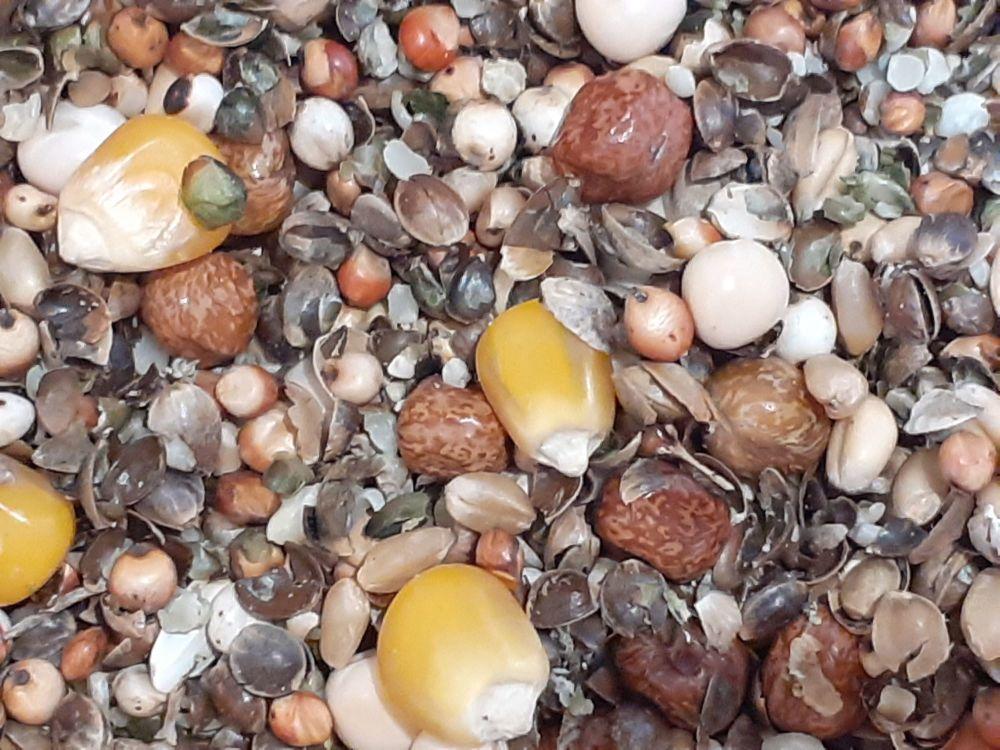 3kg Carp Spodding Mix  Crushed Hemp and small seed, Ground Baits