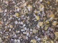 1.500kg SEALED PACK  Vitalin and Crushed Hemp Ground Bait