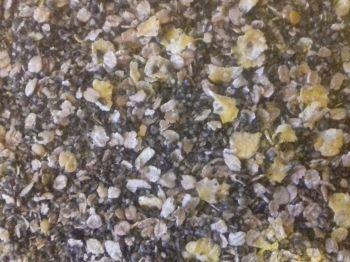 3kg  SEALED PACK  Vitalin & Crushed Hemp Ground Bait