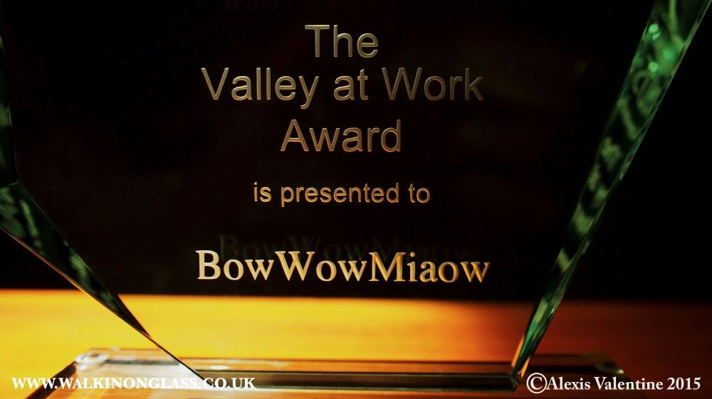 valley at work award bobwowmiaow