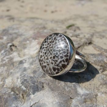 Sterling Silver Fossilised Coral Specimen Ring