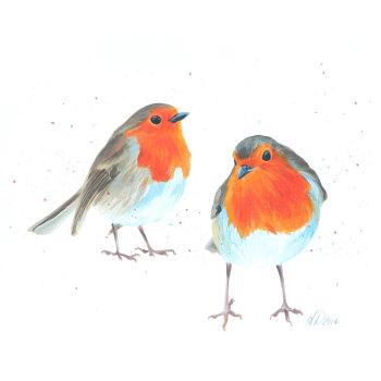 Pair Of Robins CARD