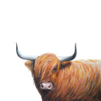 Hamish- Highland Cow CARD