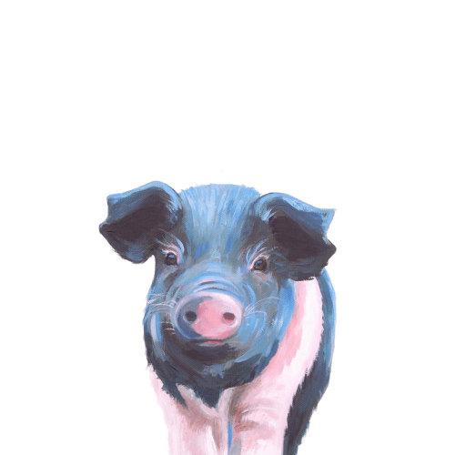 Saddleback Pig Print