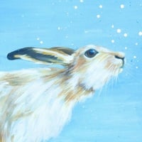 Monty- Mountain Hare CARD