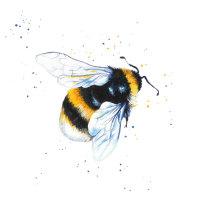 Bumble Bee Mini Print