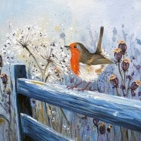 Winter Robin CARD