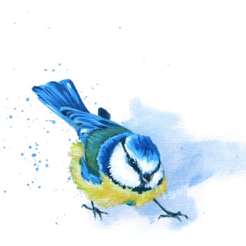 Blue Tit Card