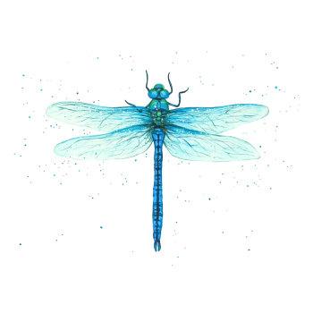 Dragonfly Mini Print