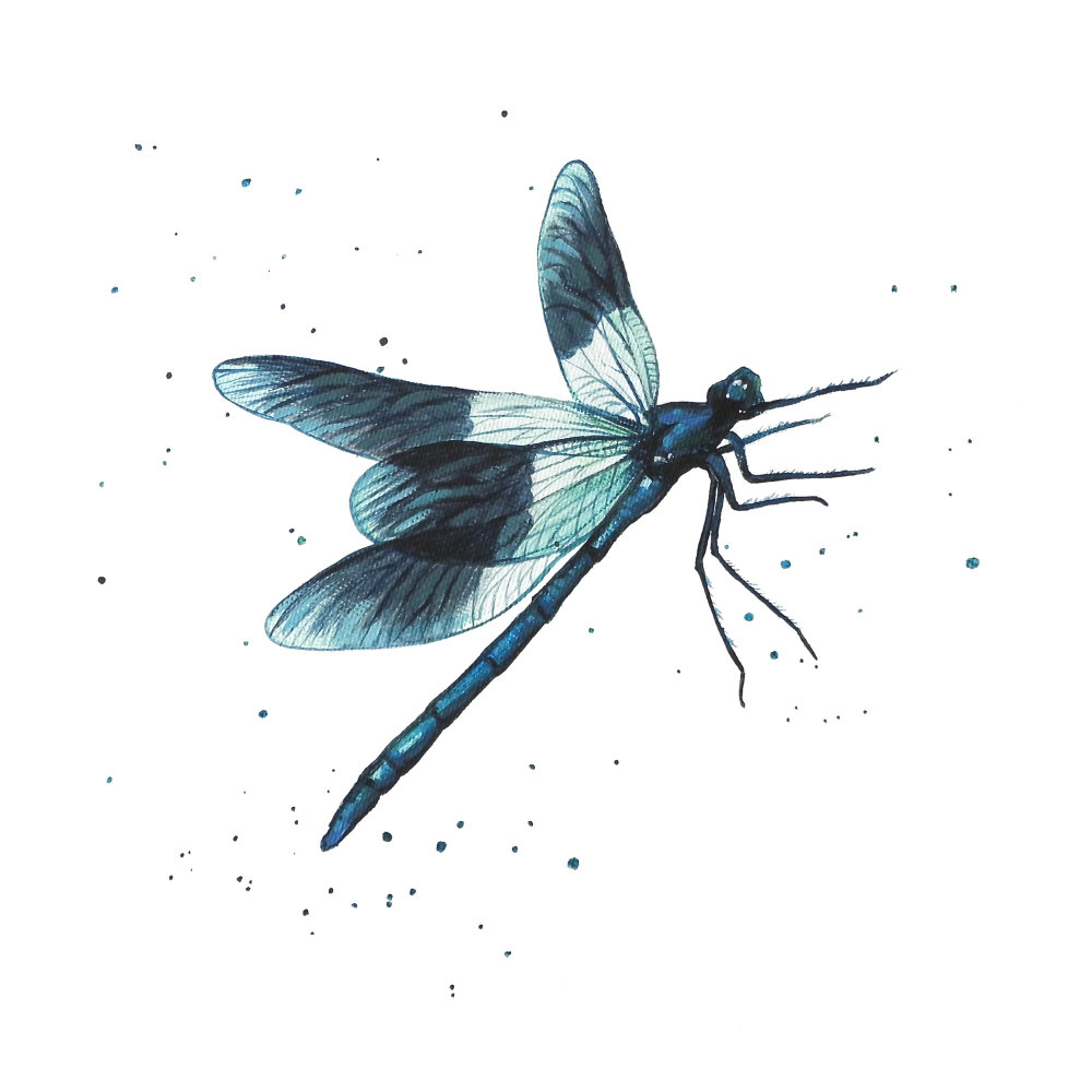 Damslefly