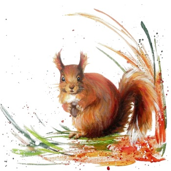 Rusty- Red Squirrel PRINT
