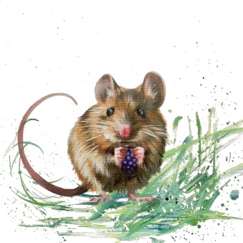 Miles- Field Mouse CARD