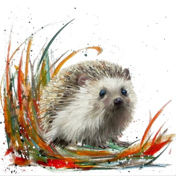 Herbie- Hedgehog CARD