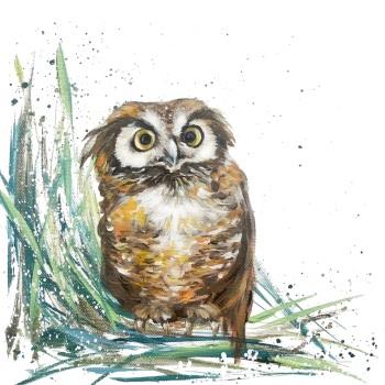 Oswald- Owl CARD
