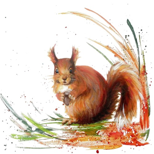 Rusty- Red Squirrel CARD