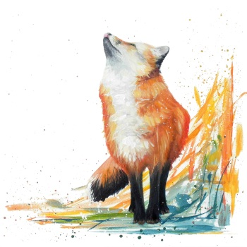 Felix Fox- First Snow CARD