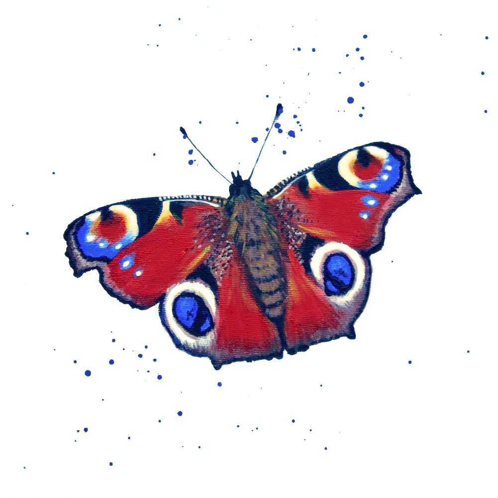 Peacock Butterfly MINIPRINT