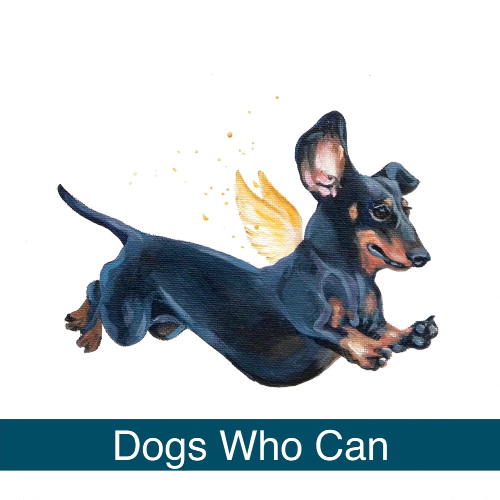 Dogs Who Can!