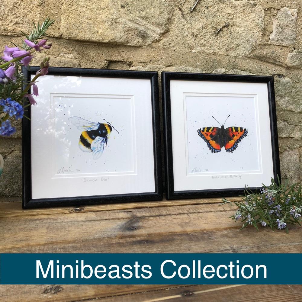 Minibeasts Range