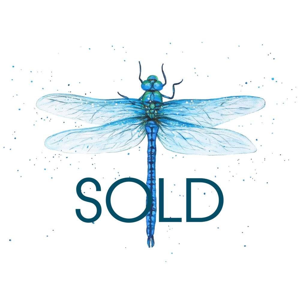 SOLD- Dragonfly