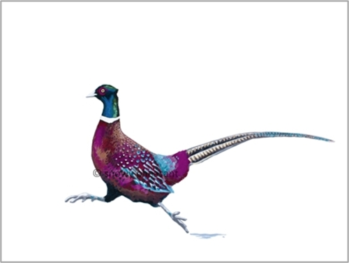 Snowy Pheasant Print