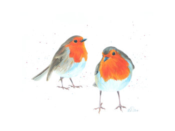 Pair Of Robins PRINT